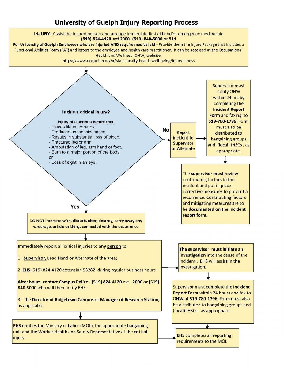 Flow Chart of the University of Guelph Injury Reporting Process
