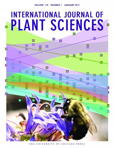cover photo for the International Journal of Plant Sciences