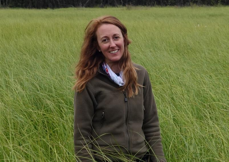 Merritt Turetsky at the Alaska Peatland Experiment