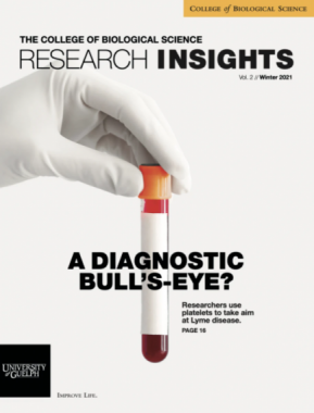 Research Insights Magazine Cover
