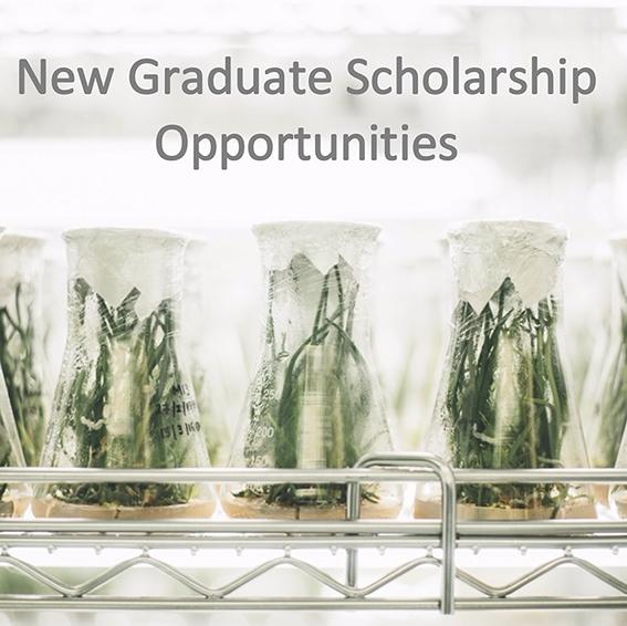 https://www.uoguelph.ca/ib/new_graduate_scholarships