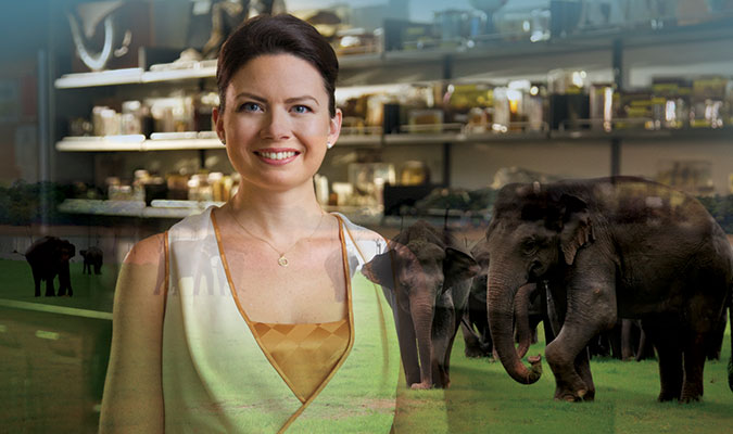 A woman with dark hair worn up, wearing a cream and dark yellow dress, smiling at the camera. Her image is overlayed by ones of a medicinal shelving unit and numerous elephants.