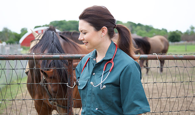 A woman shows her wearing a dark green vet scrubs or uniform with a red stethoscope, walking past horses outdoors.