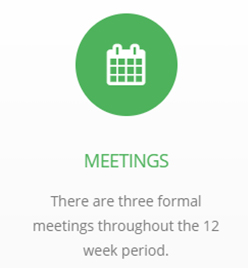 Meetings: There are three formal meetings throughout the 12 week period.