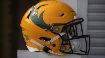 Edmonton Elks helmet