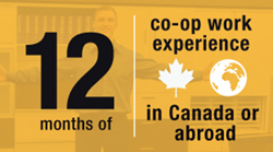 twelve months of co-op work experience in Canada or abroad