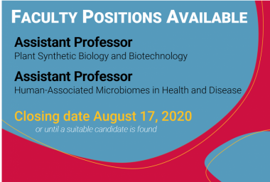 Available faculty positions - click for more detail