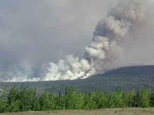 The 2003 Erickson Creek Fire burned more than a month and affected about 48,000 hectares of boreal forest.