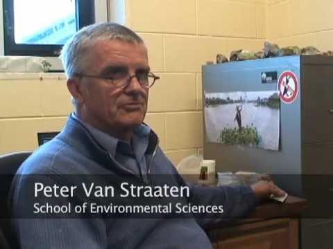School of Environmental Sciences Professor Peter Van Straaten