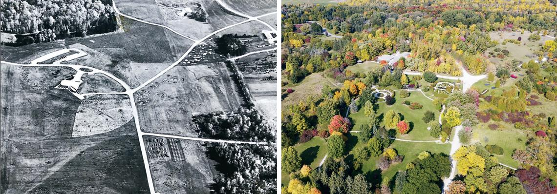 A black and white image of bare fields compared with a colour photo of green forests
