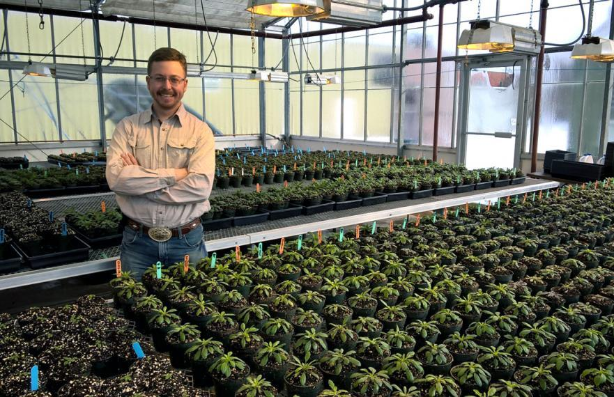 Chris stands in a greenhouse with rows of small green plants in containers