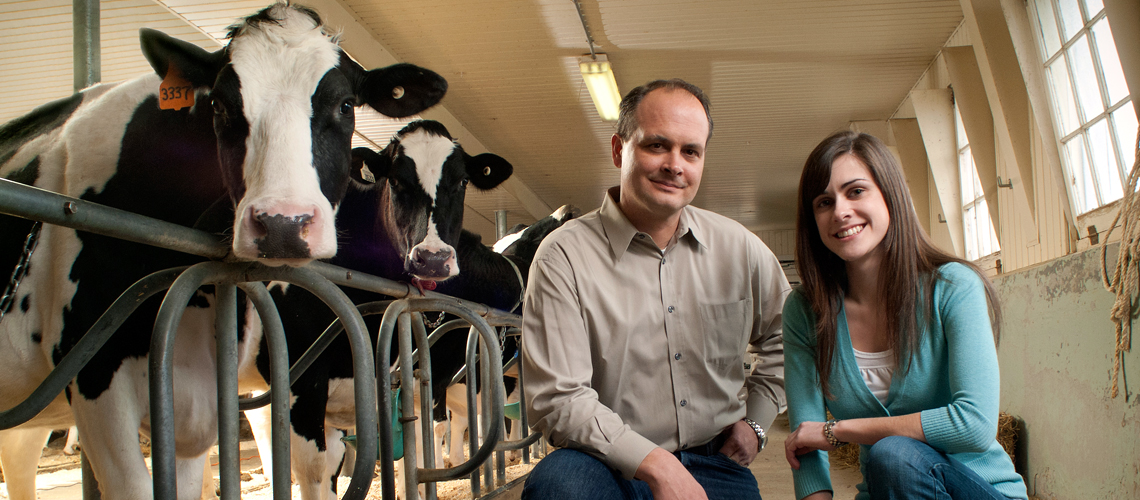 Holstein cow, male professor and female student look at camera, standing in aisle of barn