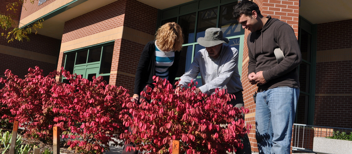 Female and male student look at red bush in front of building with instructor