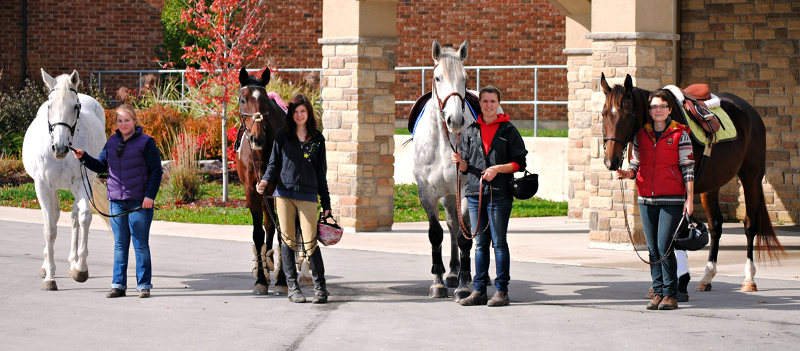 Four female students stand outside leading four horses