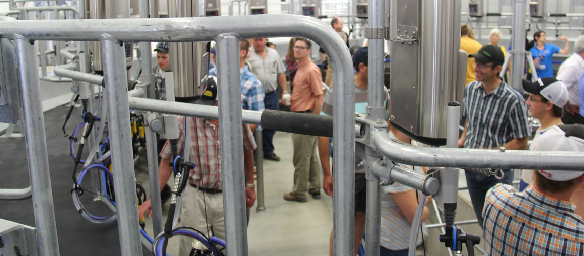 Close up of pipes of a robotic milker with people touring behind