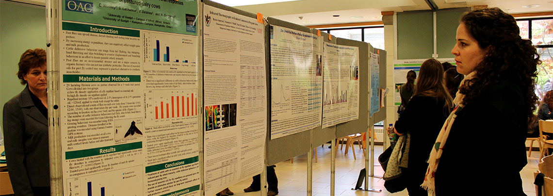 Young woman looks at research poster competition