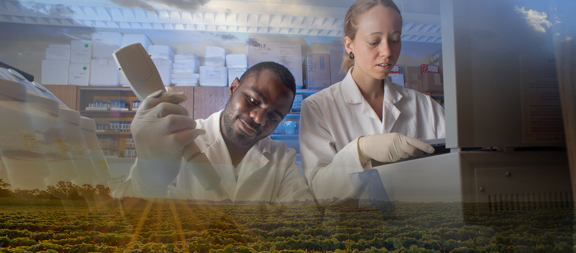 Two students in lab coats do testing, overlay of crop field
