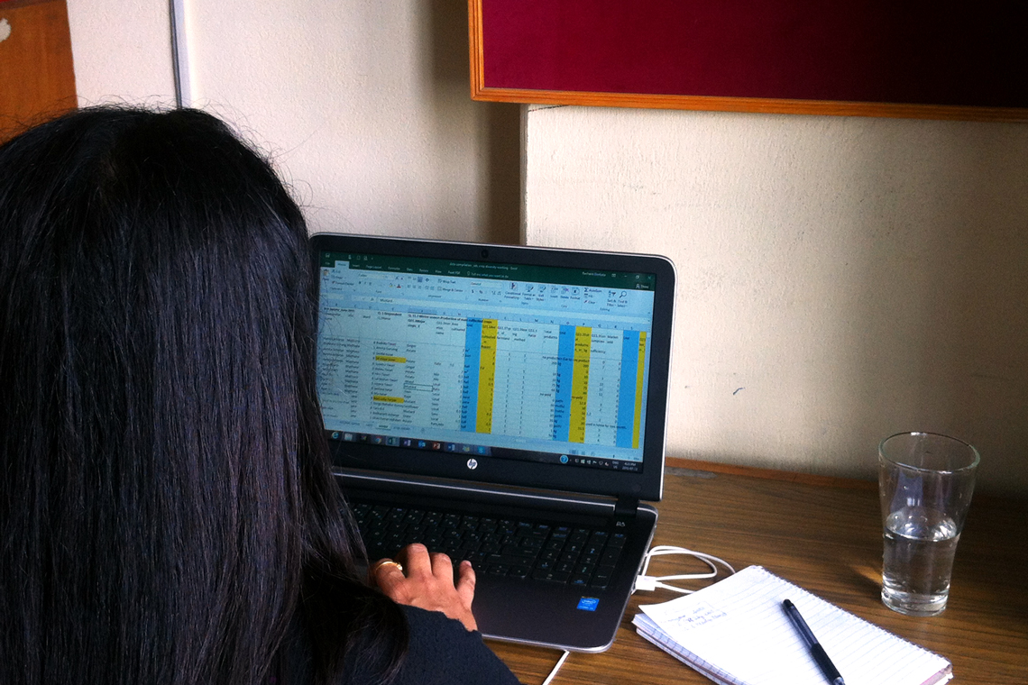 Photo of Rachana's back, working at desk on laptop.