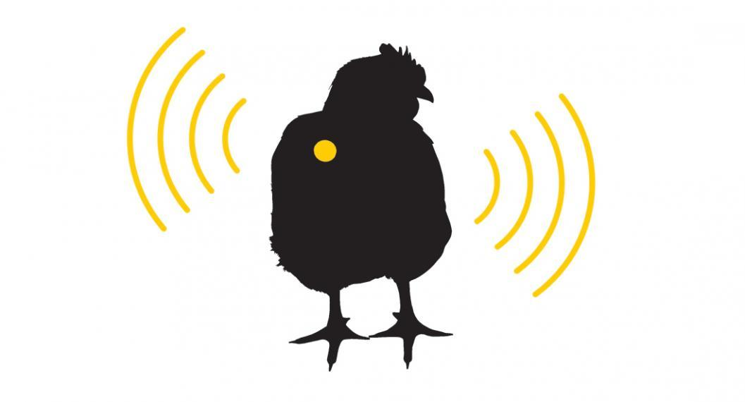 Silhouette of chicken with yellow dot and signals surrounding it