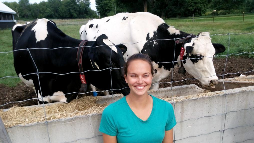 PhD candidate Meagan King stands with two dairy cows.