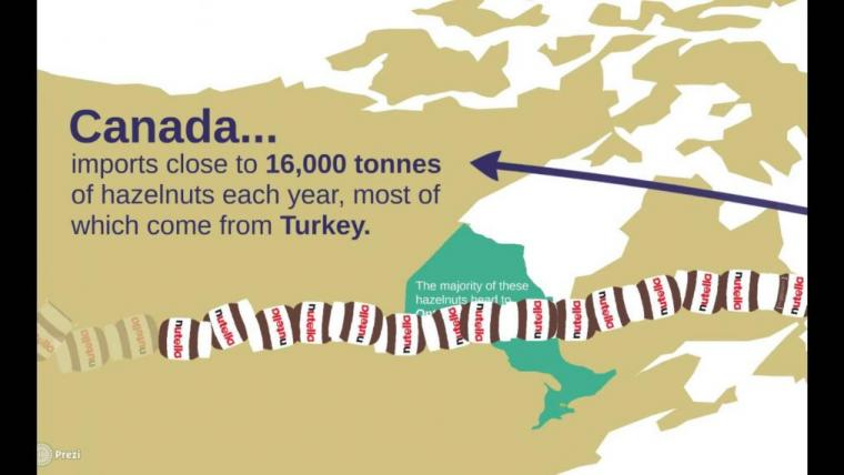 Canada imports close to 16,000 tonnes of hazelnuts each year, most of which come from Turkey.