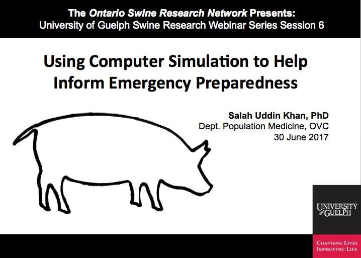 Using Computer Simulation to Help Inform Emergency Preparedness