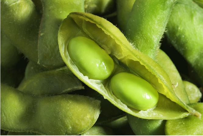 ontario soybean