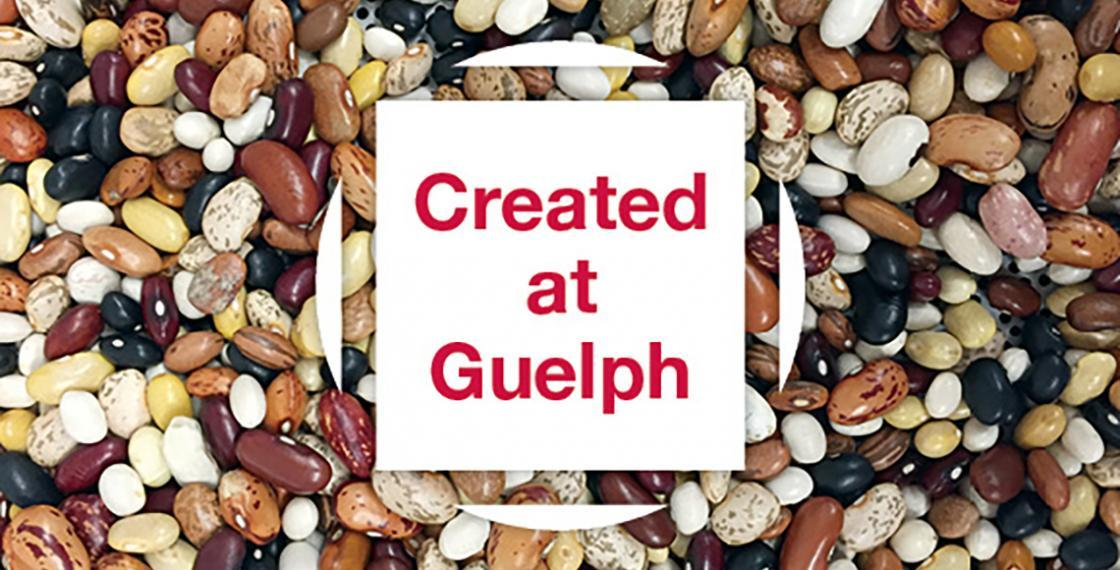 Image of beans and Created at Guelph logo