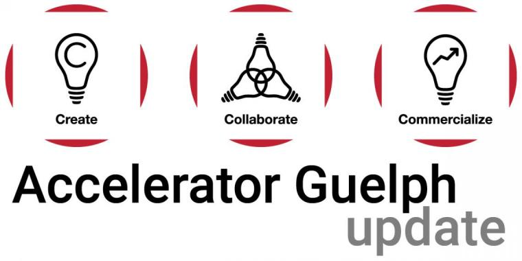 "Three Research Innovation Office icons with ""Accelerator Guelph update"" below"