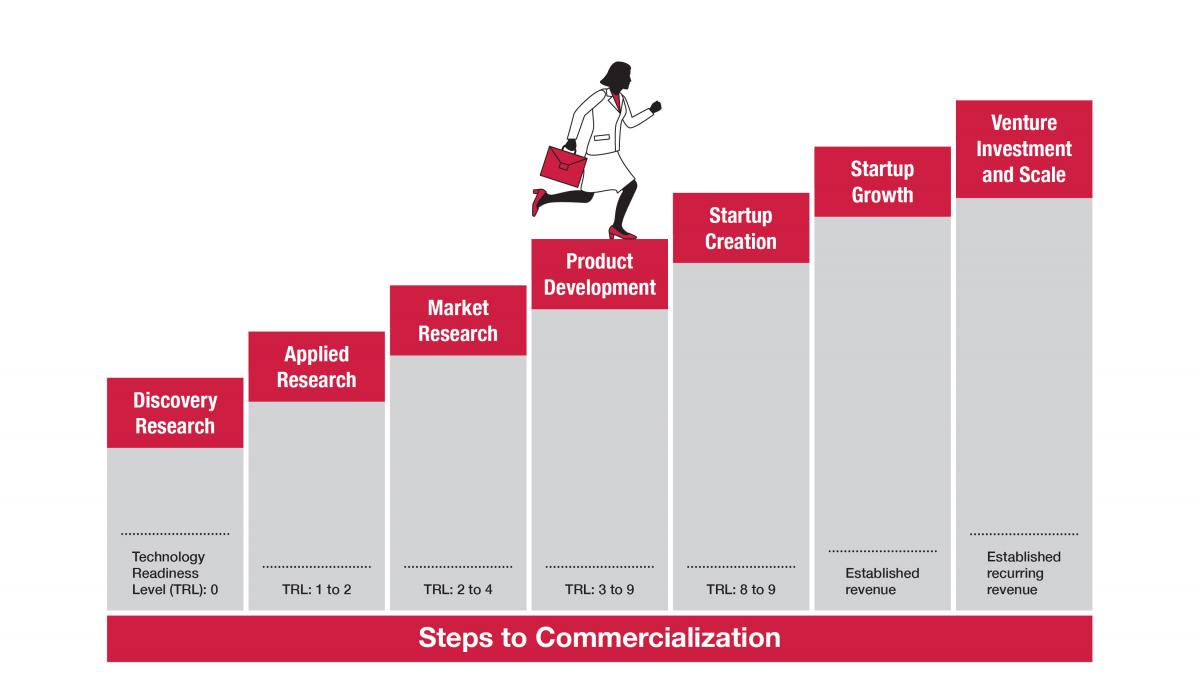 Steps to Commercialization Graphic. Discovery Research > Applied Research > Market Research > Product Development > Startup Creation > Startup Growth > Venture Investment and Scale