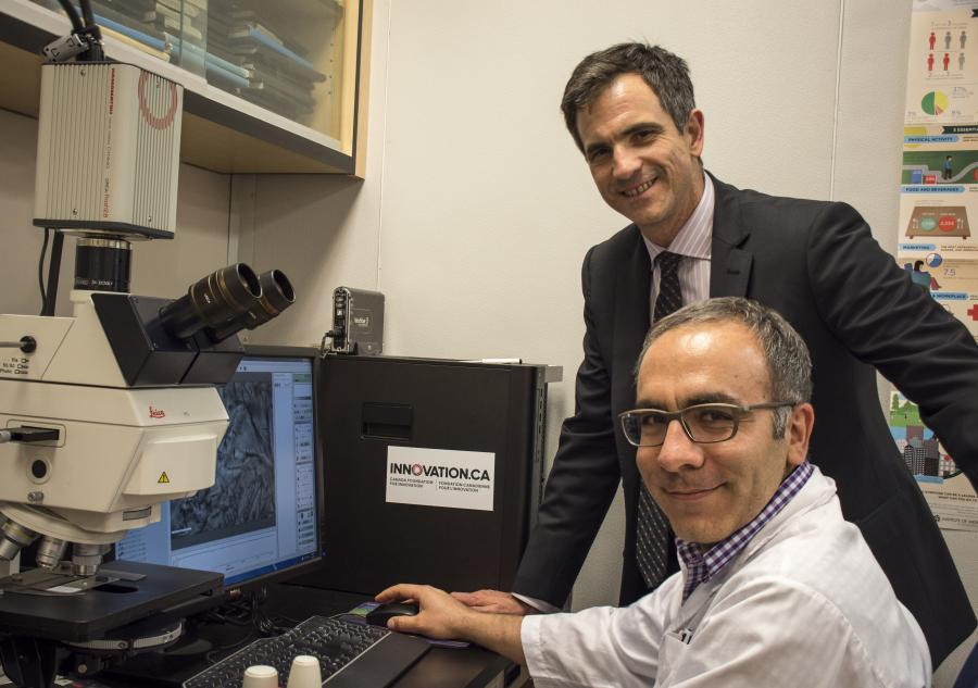 University of Guelph Prof. Alejandro Marangoni (back), is seen analyzing the micro-structure of emu oil crystals with research assistant Saeed Ghazani.