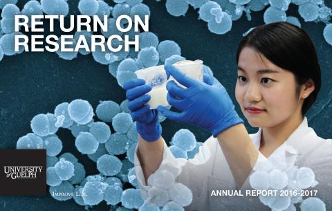 Cover of Return on Research 2016-17