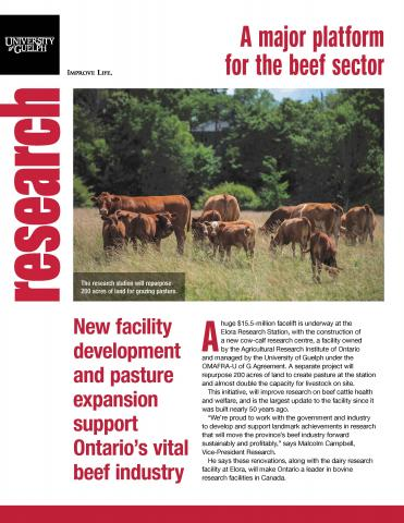 Cover of this publication - photo of several beef cattle in a field with text below.