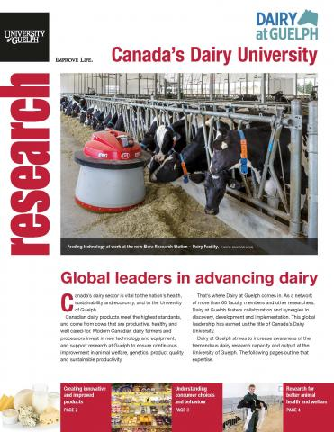 Cover of this publication - Photo of cows in stalls using new feed technology looking at the camera with text below.