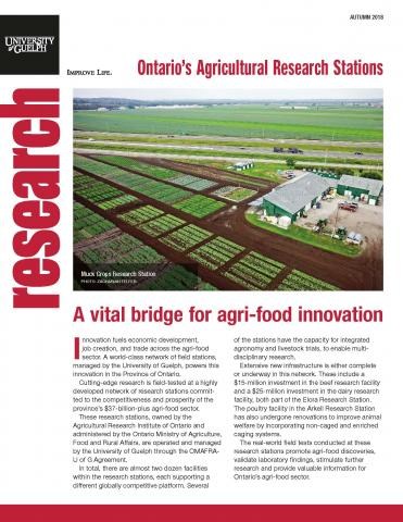 The first page of this publication - an arial photo of the muck crops research station with text below it.