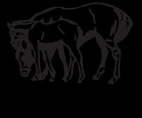 Logo for Equine Guelph