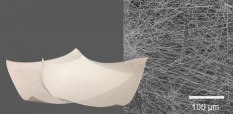 Antimicrobial nonwoven membrane