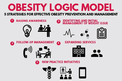 Infographic of the obesity logic model
