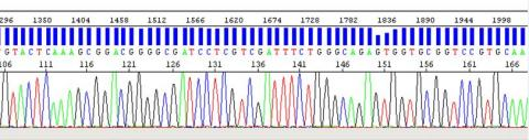 A genomics sequence