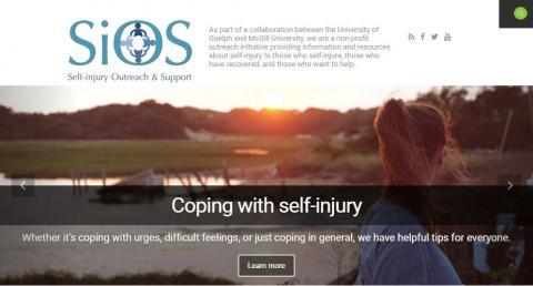 Screenshot of the SiOS website