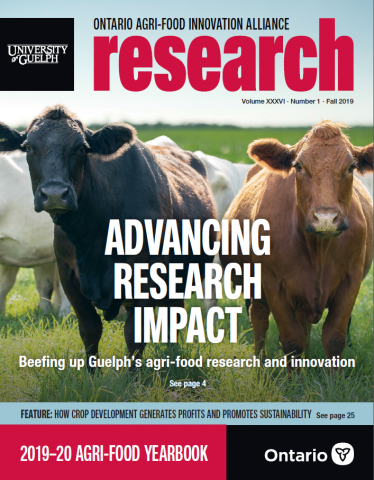 "Cover of ""Advancing Research Impact"" - shows a black cow on the left and a brown cow on the right"
