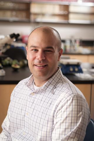 A photo of Dr. Paul Spagnuolo in his lab