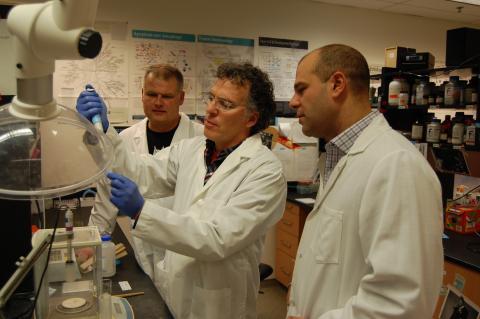 Profs. Jim Petrik, Marc Coppolino and Paul Spagnuolo
