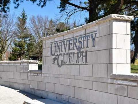 Photo of U of G sign on wall