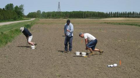 Soil sampling in the field