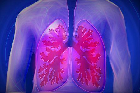 Graphic image of lungs