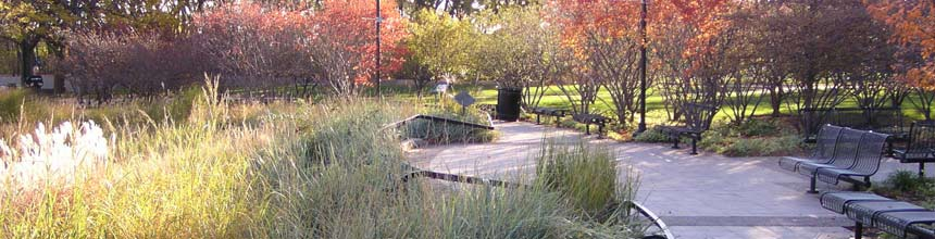 Fall Park image showing path