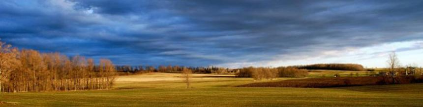 Wayne Caldwell Farm Field Photo