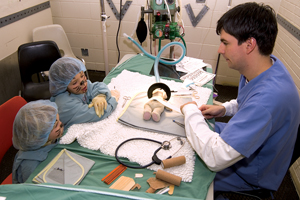 College Royal teddy bear surgery at Ontario Veterinary College